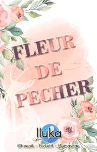 Fleurs de Pêcher plumavitae auteur accompagné critique